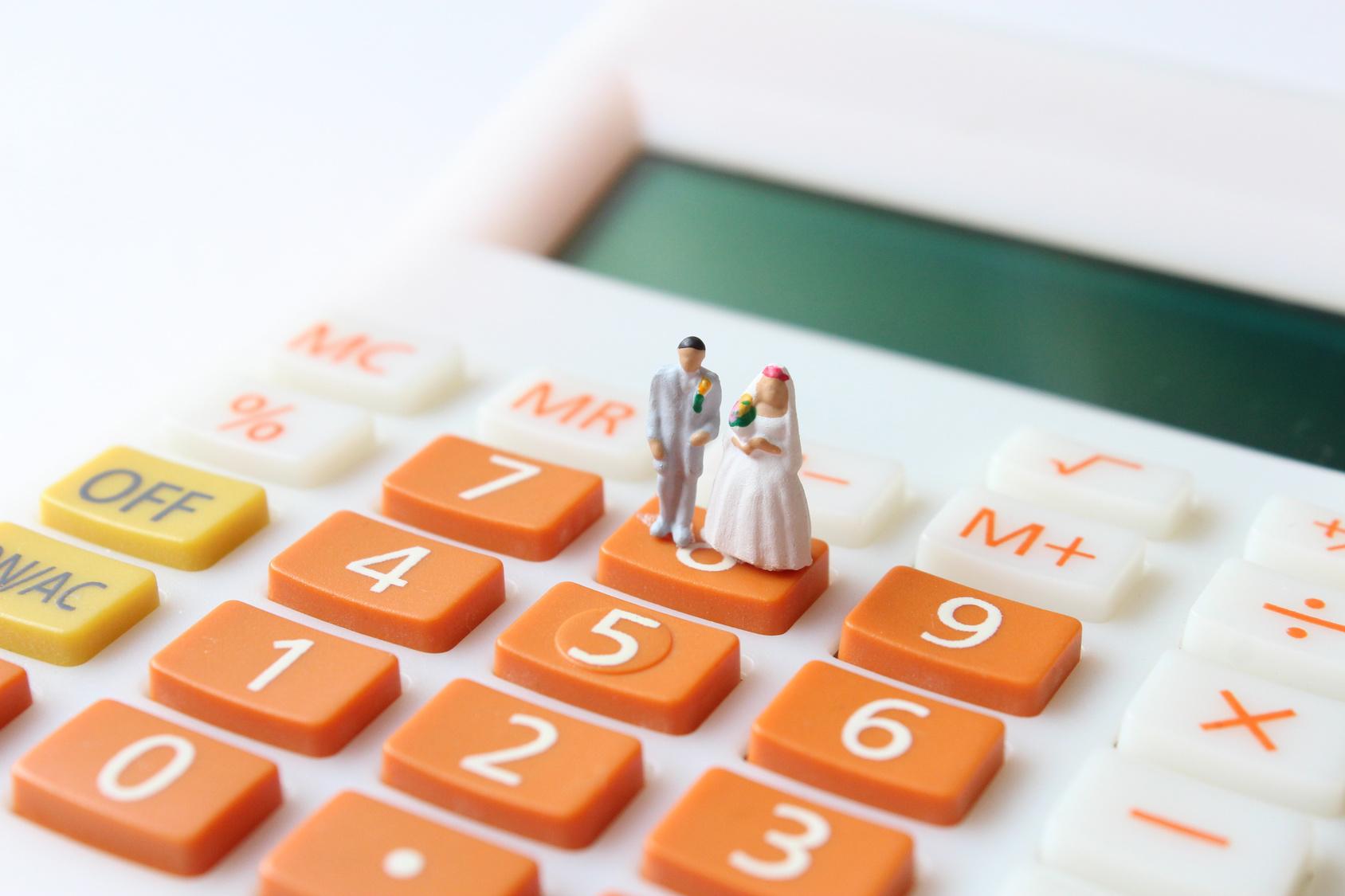 家族婚 費用